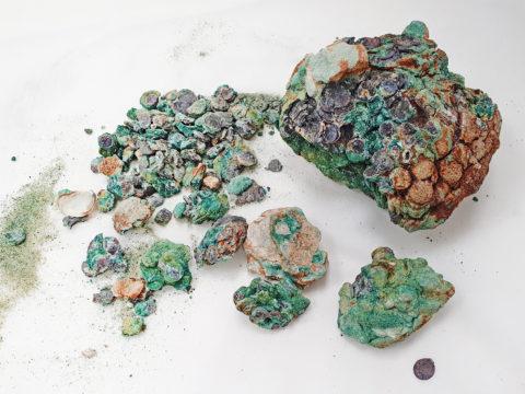 אוסף המטבעות העתיקים מחוף הבונים - צילום: כארם סעיד