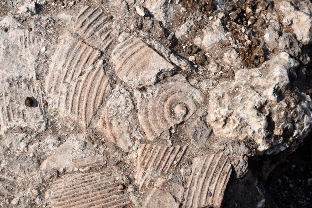 שברי קנקן שנחשפו באתר. צילום יולי שוורץ